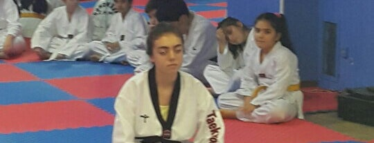 Akademi Form Spor Merkezi is one of firat.