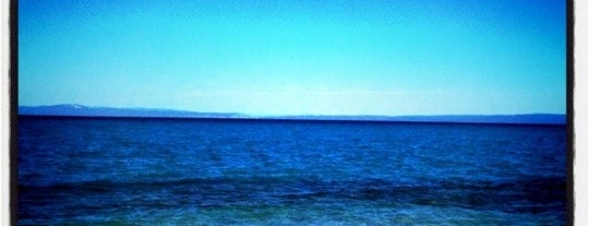 Paliouri Beach is one of Halkidiki.