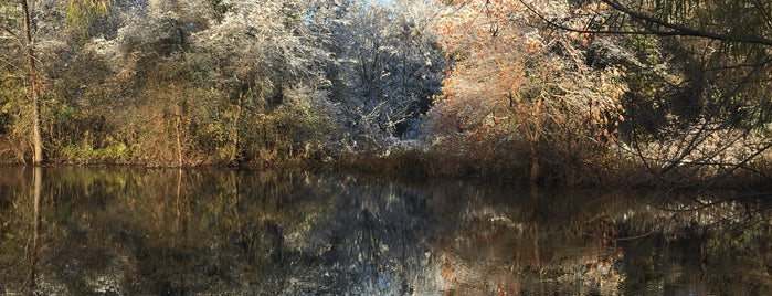 East Metropolitan Park is one of Lieux qui ont plu à Doug.
