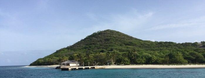 Petit St. Vincent Island is one of Ronald 님이 좋아한 장소.