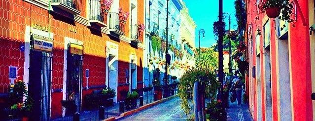 El Rincón de las Flores is one of Liliana 님이 좋아한 장소.