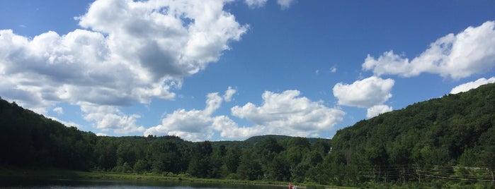 Pine Hill Lake is one of Michelle'nin Kaydettiği Mekanlar.