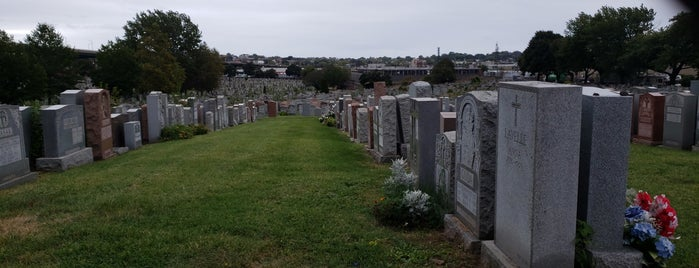 Calvary Cemetery is one of NYC to-do list.