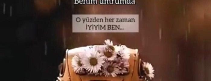 Seyit Ustanın Yeri is one of Tempat yang Disukai Ünsal.