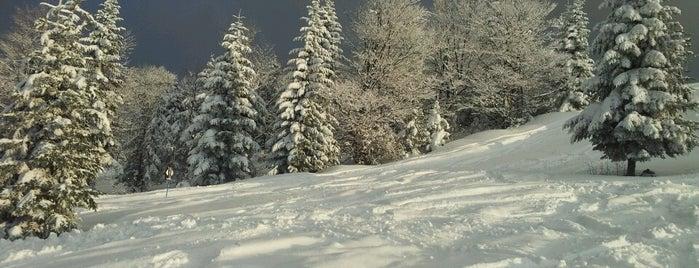 Гора Красія / Krasiya Mountain is one of Posti che sono piaciuti a Katia.
