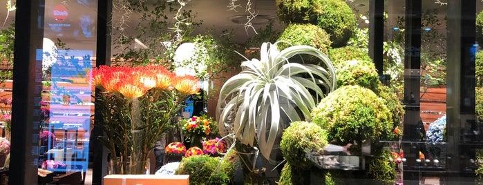 Nicolai Bergmann 新宿店 is one of Tokyo.
