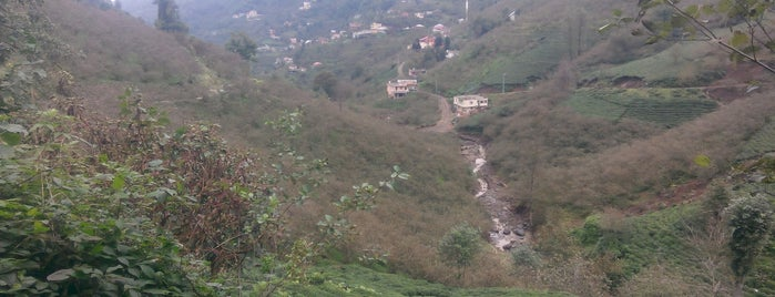 Dereköy Köyü is one of ayşegül 님이 좋아한 장소.