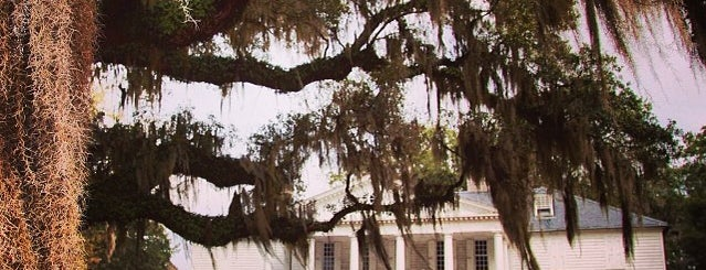 Hampton Plantation is one of Best Places to Check out in United States Pt 1.
