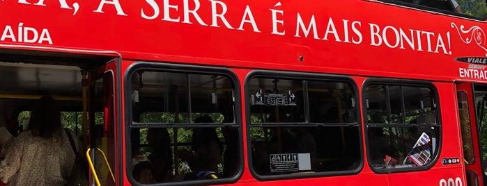 Bus tour is one of Locais curtidos por Nicoli.