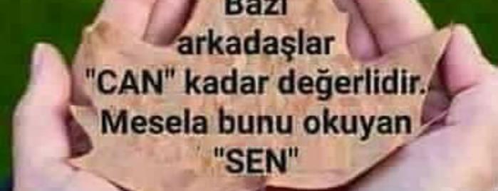 seyhan nakış is one of NAKIŞ İMALATÇILARI - TURKEY.