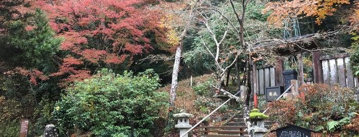源頼家の墓 is one of 伊豆.