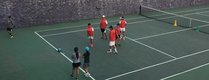 Tennis Palace is one of Floreríaさんのお気に入りスポット.