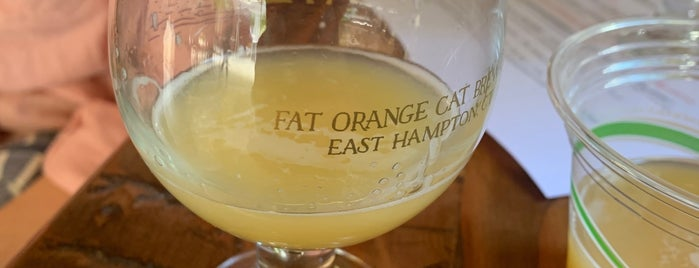 Fat Orange Cat Brew Co. is one of Cole'nin Beğendiği Mekanlar.