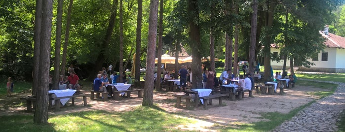 Spomen kompleks Brankovina is one of Posti che sono piaciuti a Jelena.
