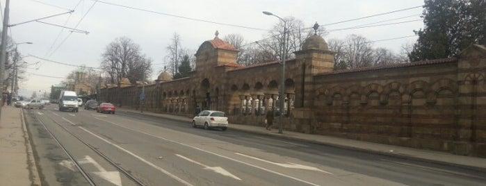 Novo groblje is one of Posti che sono piaciuti a Mirna.