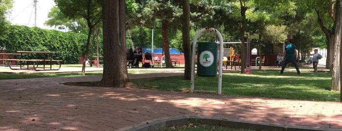 Mahmudiye Parkı is one of Locais curtidos por Fadik.