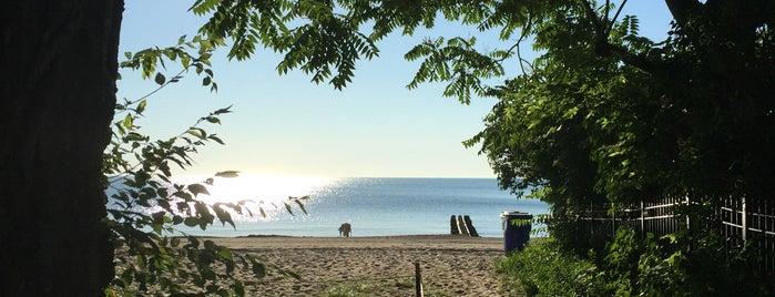 Helen Doria Beach Park is one of Andy : понравившиеся места.