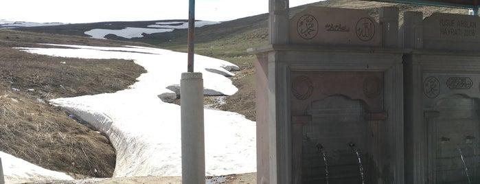 Güzelyayla Geçidi 2100 metre is one of Şahnygun 님이 좋아한 장소.