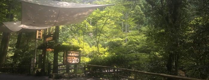 もみぢ家 別館 川の庵 is one of Dav 님이 좋아한 장소.