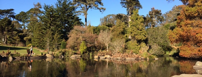 San Francisco Botanical Garden is one of Guide to San Fran.