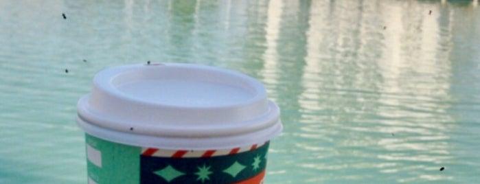 Starbucks is one of Locais curtidos por Tolunay.