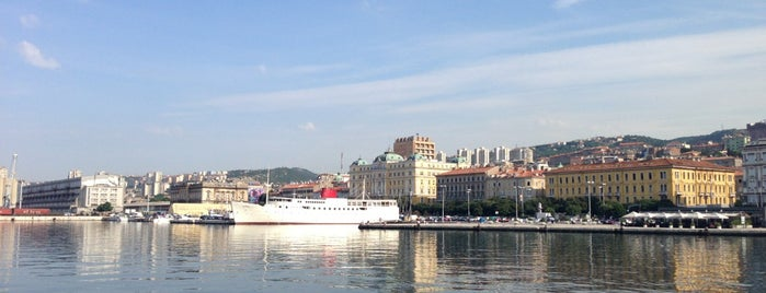 Rijeka is one of Gabriele d'Annunzio -  #ilVate4sq.