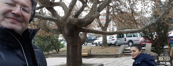 Şili Meydanı is one of Locais curtidos por Fatih.