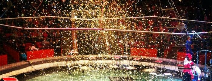 Сочинский государственный цирк / Circus Sochi is one of Сочи дождь.
