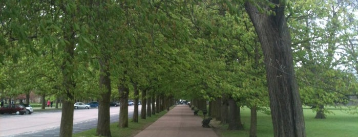 Greenwich Park is one of London - All you need to see!.