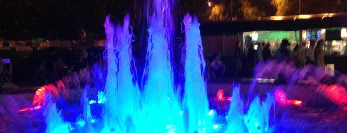 Поющие Фонтаны / Singing Fountains is one of Sochi 2014.