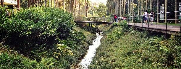 Jardim Botânico de São Paulo is one of To do list 2014.