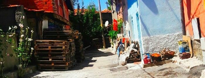 Gazi Kemal is one of Kütahya'nın Mahalleleri.