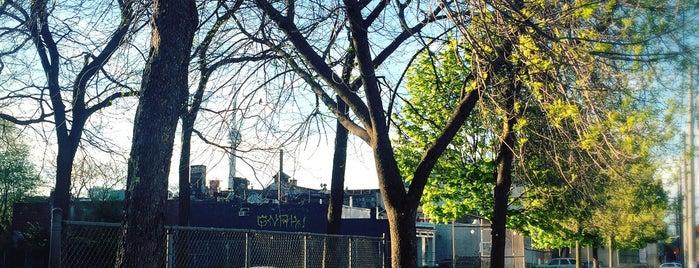 South Annex is one of Toronto Neighbourhoods.