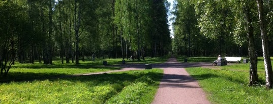 Парк Сосновая Поляна is one of Gespeicherte Orte von Анастасия.