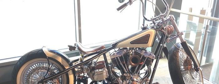 Harley-Davidson Aurora is one of Orte, die Любовь gefallen.