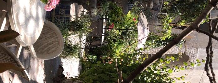 Hotel La Huerta is one of Orte, die Thais gefallen.