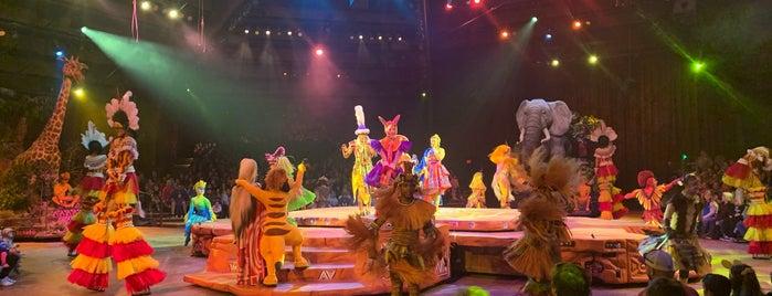 Festival of The Lion King is one of Locais salvos de Priscila.