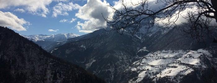 Homeze Yaylası is one of Mountain Resorts In Black Sea Region.