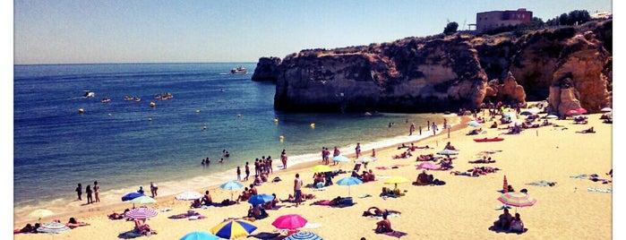 Praia da Batata is one of สถานที่ที่ Rania ถูกใจ.