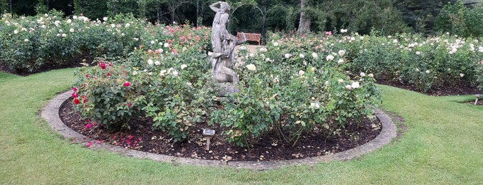 Blenheim Palace Rose Garden is one of reviews of museums, historical sites, & landmarks.