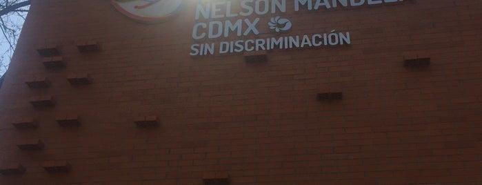 Instituto Nelson Mandela CDMX is one of Liliana'nın Beğendiği Mekanlar.