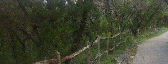 Jogging Trails At Rogers Ranch is one of Junior'un Beğendiği Mekanlar.