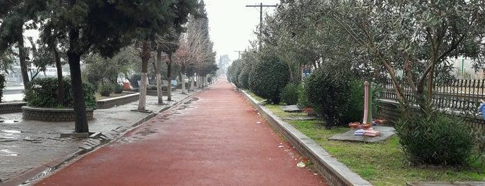 Atatürk koşu yolu is one of Tempat yang Disukai Fuat.