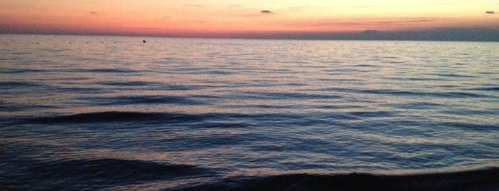 Shanty Beach & Bistro is one of antalya~ alanya~ side~belek.