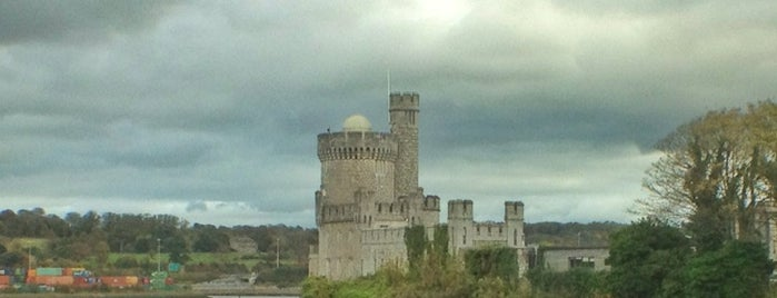 Blackrock Castle is one of Locais curtidos por Paddy.