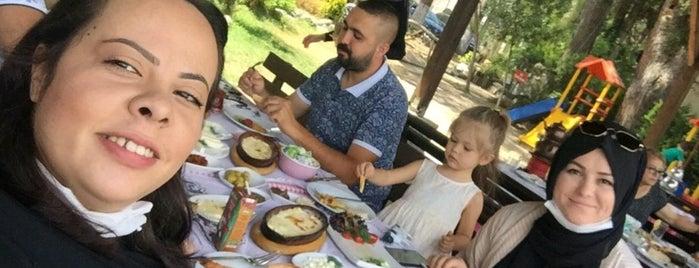 Köy Konağı Restoran is one of Posti che sono piaciuti a Hasan.