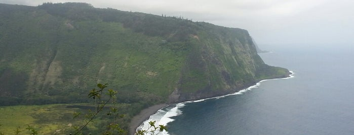 Waipiʻo Valley is one of Big Island.
