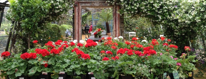 Petersham Nurseries is one of Wendy London.