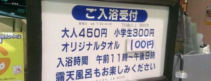 道の駅 飛騨金山 ぬく森の里温泉駅 is one of Posti che sono piaciuti a Shigeo.