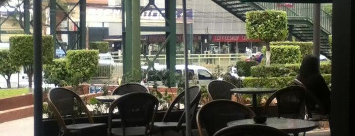 Starbucks is one of Locais curtidos por Doppelganger.